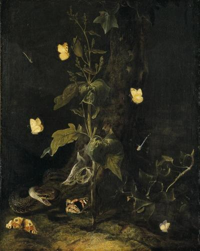 Serpent and Butterflies in the Woods
