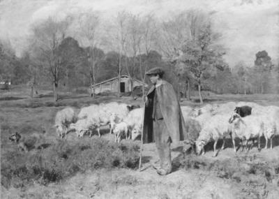 A Young Shepard with his Flock