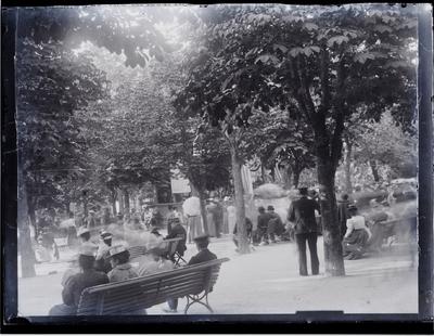 Concert în parc
