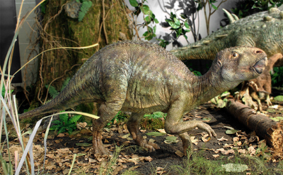 Image from object titled Rhabdodontid dinosaur body reconstruction (Iharkút, Bakony Mts, Late Cretaceous vertebrate locality)