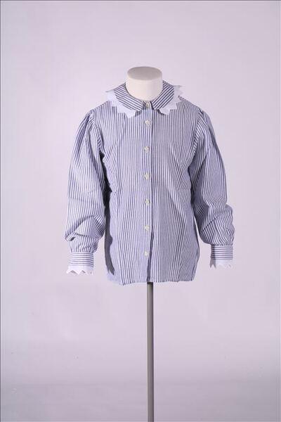 Hemd met wit en blauwe verticale strepen met kraag