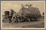 prentbriefkaart met een hooiwagen bij het werkdorp in de Wieringermeer, ca. 1936
