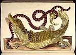 Kaaiman en slang