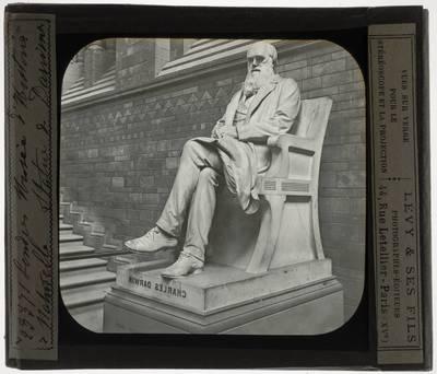 Joseph Boehm. Charles Darwin
