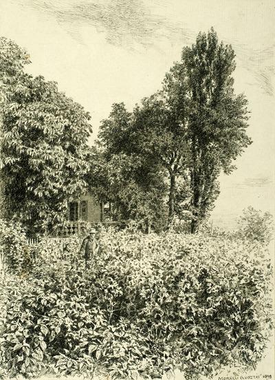 Jókai svábhegyi kertjében