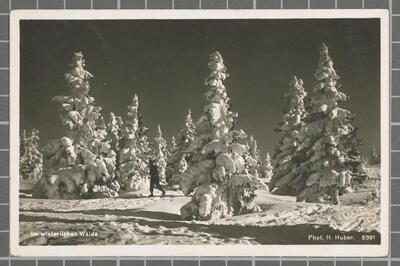 Im winterllchen Walde