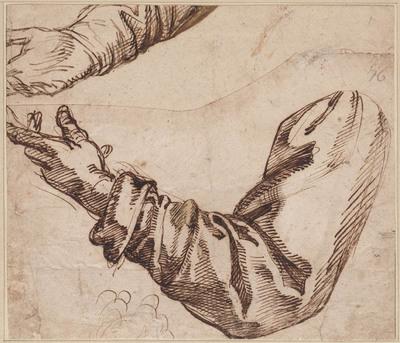 Studies van armen en handen