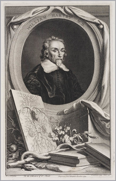 The Heads of Illustrious persons: William Harvey