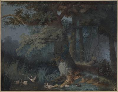 Eendenvijver in een bos met twee jagers