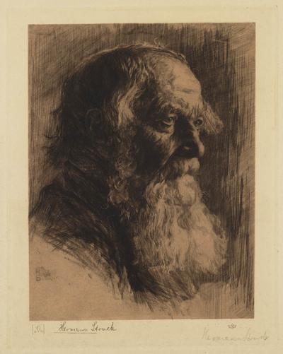 Kop van een oude man met baard