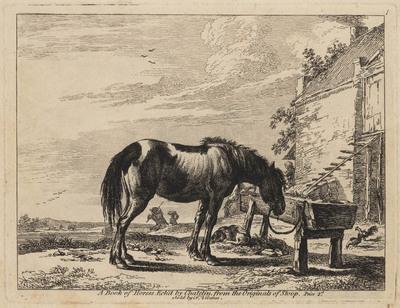 Paard bij voederbak (Book of Horses)