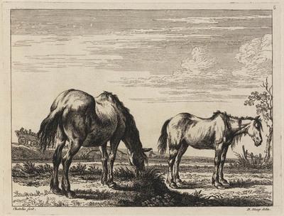 Twee paarden aan de oever van een rivier (Book of Horses)