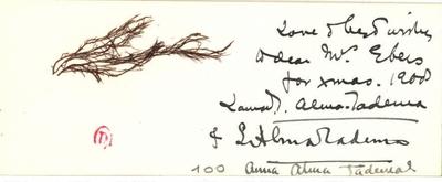 Carte de Lawrence et Laura Alma-Tadema; Carte autographe signée Lawrence et Laura Alma-Tadema, écrite par Laura et non datée