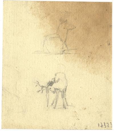 Croquis d'Antoine-Louis Barye; Croquis à la mine de plomb non signé d'Antoine-Louis Barye, non daté, représentant deux animaux