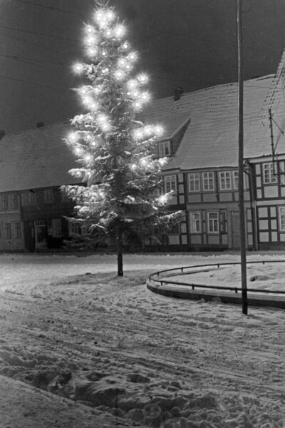 Image from object titled Winterspaziergang