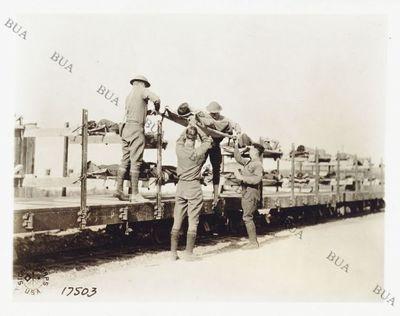 Image from object titled Un treno per il trasporto dei feriti