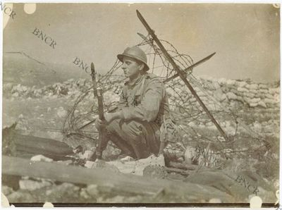 Image from object titled Scene della nostra guerra