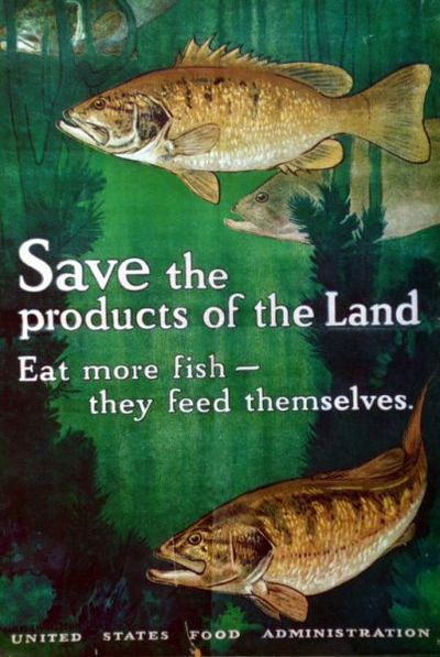 Save the products of the land : eat more fish, they feed themselves / Charles Livingston Bull