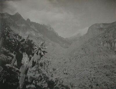 Valle Bupuku