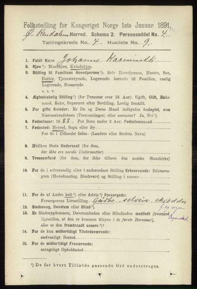 Image from object titled Folketelling 1891 - Øvre Rendal - personsedler - side 1019