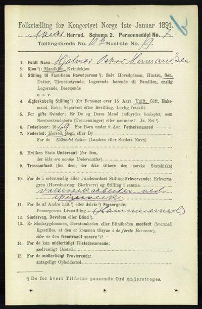 Image from object titled Folketelling 1891 - Aker - personsedler - side 9848