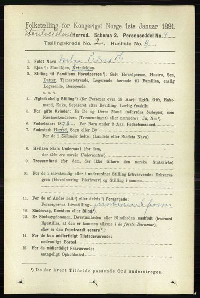 Image from object titled Folketelling 1891 - Stor-Elvdal - personsedler - side 446