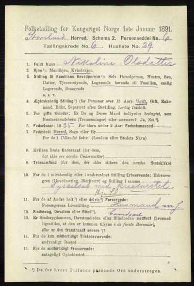 Image from object titled Folketelling 1891 - Stor-Elvdal - personsedler - side 2326