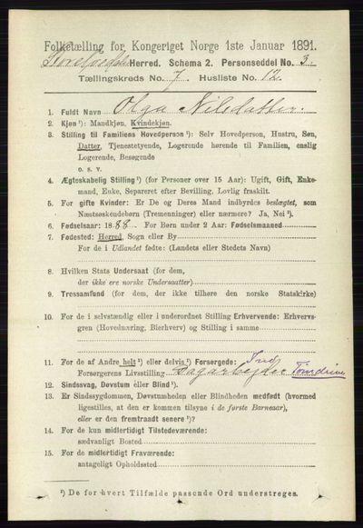 Image from object titled Folketelling 1891 - Stor-Elvdal - personsedler - side 2736