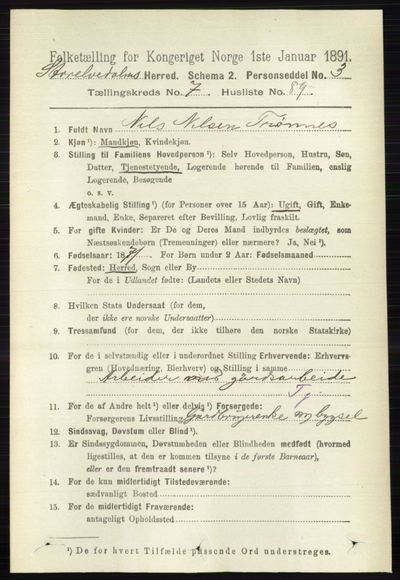 Image from object titled Folketelling 1891 - Stor-Elvdal - personsedler - side 3347