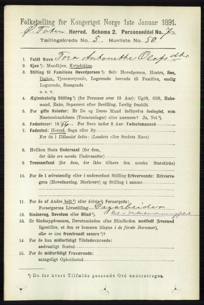 Image from object titled Folketelling 1891 - Østre Toten - personsedler - side 3443