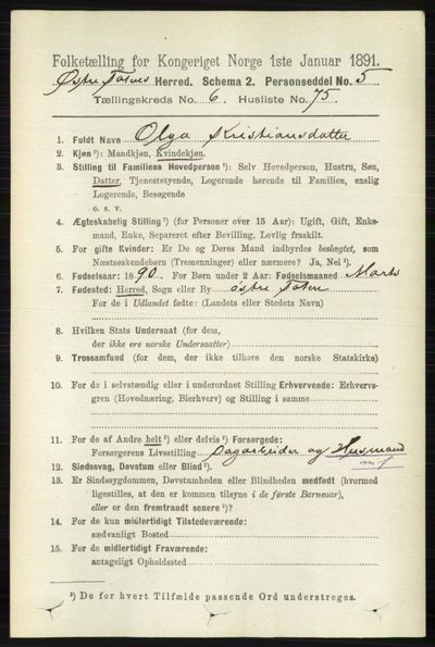 Image from object titled Folketelling 1891 - Østre Toten - personsedler - side 4241