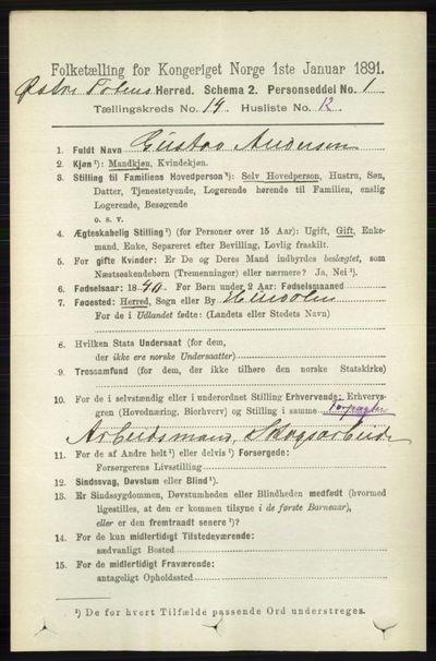 Image from object titled Folketelling 1891 - Østre Toten - personsedler - side 9117