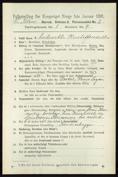 Image from object titled Folketelling 1891 - Vestre Toten - personsedler - side 212