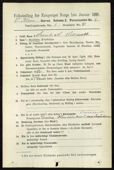 Image from object titled Folketelling 1891 - Vestre Toten - personsedler - side 455
