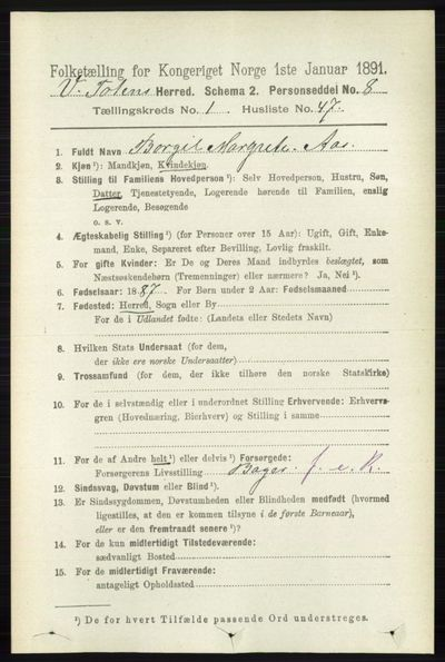Image from object titled Folketelling 1891 - Vestre Toten - personsedler - side 502