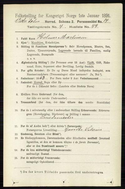 Image from object titled Folketelling 1891 - Vestre Toten - personsedler - side 2976