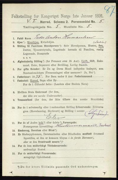 Image from object titled Folketelling 1891 - Vestre Toten - personsedler - side 3251