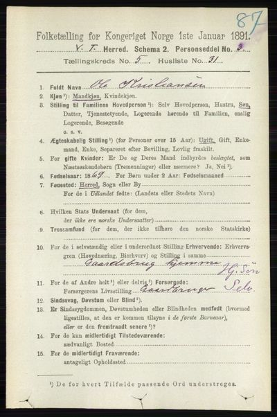 Image from object titled Folketelling 1891 - Vestre Toten - personsedler - side 3383
