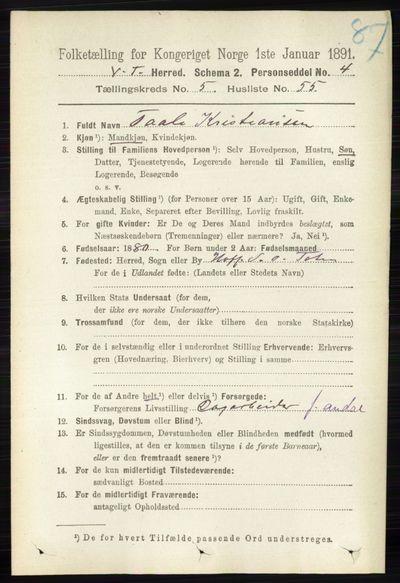 Image from object titled Folketelling 1891 - Vestre Toten - personsedler - side 3520