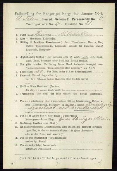 Image from object titled Folketelling 1891 - Vestre Toten - personsedler - side 5681