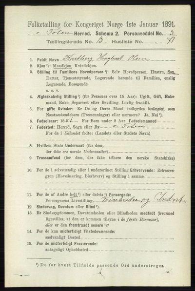 Image from object titled Folketelling 1891 - Vestre Toten - personsedler - side 8189