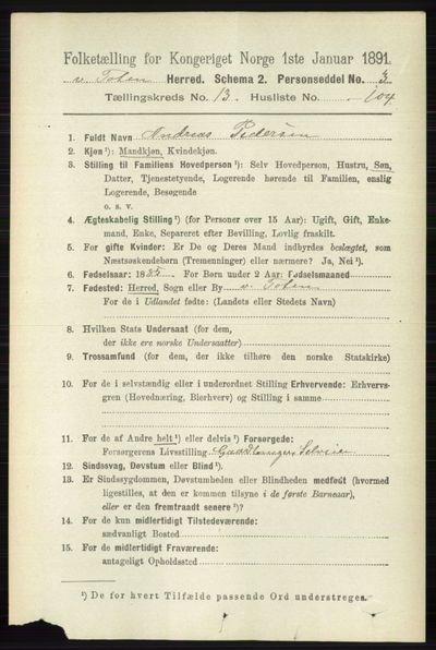 Image from object titled Folketelling 1891 - Vestre Toten - personsedler - side 8379