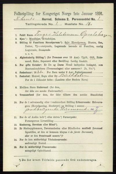 Image from object titled Folketelling 1891 - Nordre Land - personsedler - side 216