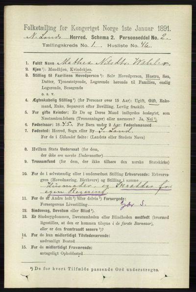 Image from object titled Folketelling 1891 - Nordre Land - personsedler - side 410
