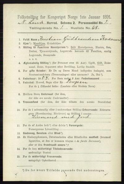 Image from object titled Folketelling 1891 - Nordre Land - personsedler - side 519
