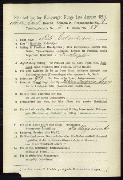 Image from object titled Folketelling 1891 - Nordre Land - personsedler - side 1080