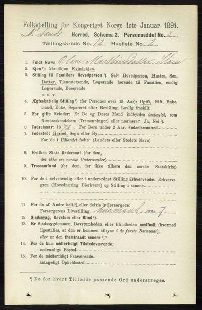 Image from object titled Folketelling 1891 - Nordre Land - personsedler - side 3231
