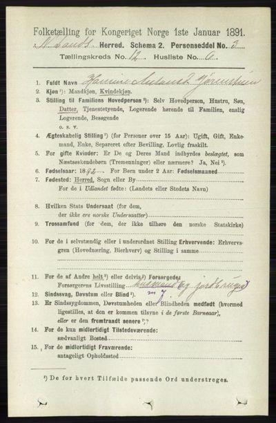 Image from object titled Folketelling 1891 - Nordre Land - personsedler - side 3252