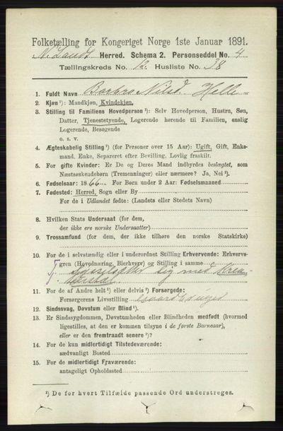 Image from object titled Folketelling 1891 - Nordre Land - personsedler - side 3444