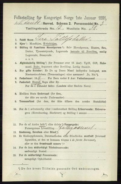 Image from object titled Folketelling 1891 - Nordre Land - personsedler - side 3445